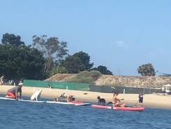 Newport back bay harbor sitio de stand up paddle / paddle surf en Estados Unidos