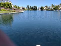 foster city lagoon paddle board spot in United States