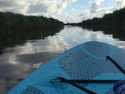 Maalwater paddle board spot in Netherlands