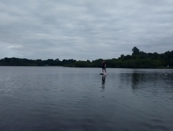 Einfelder See sitio de stand up paddle / paddle surf en Alemania