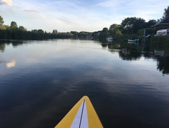 Rotte paddle board spot in Netherlands