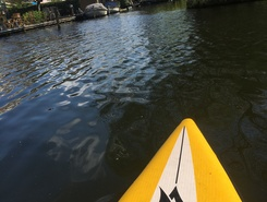 Bergsche Plas paddle board spot in Netherlands