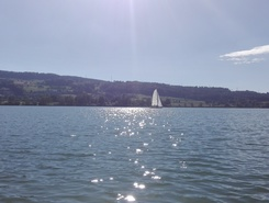greifensee sitio de stand up paddle / paddle surf en Suiza