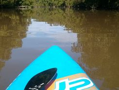 Port Inini paddle board spot in French Guiana