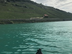 Rivaz paddle board spot in Switzerland
