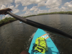 Pont de Montsinery sitio de stand up paddle / paddle surf en Guayana Francesa