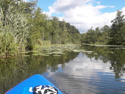 Netzowsee paddle board spot in Germany