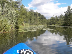 Netzowsee sitio de stand up paddle / paddle surf en Alemania