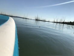 Sugiez sitio de stand up paddle / paddle surf en Suiza