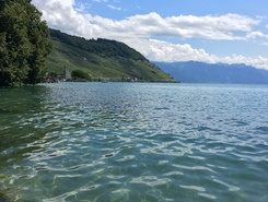 Lac Léman - Cully spot de stand up paddle en Suisse