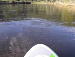 werra paddle board spot in Germany