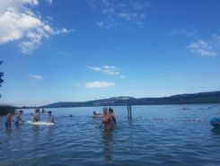 sempachersee seebad nottwil sitio de stand up paddle / paddle surf en Suiza