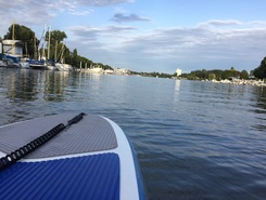 Schiersteiner Hafen paddle board spot in Germany