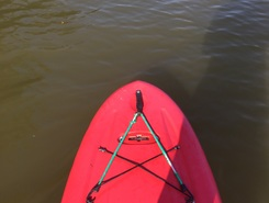 Ohio River spot de stand up paddle en États-Unis