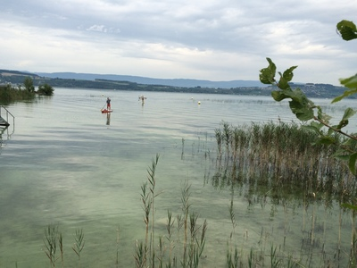 Faoug  spot de stand up paddle en Suisse