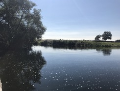 River Nene, east Northants  sitio de stand up paddle / paddle surf en Reino Unido