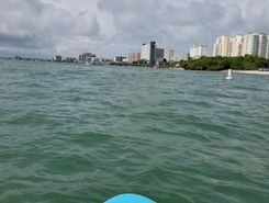 bellair causeway  sitio de stand up paddle / paddle surf en Estados Unidos