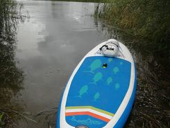 sup  paddle board spot in Russia