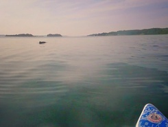 Ochseninseln   /  Ox islands  sitio de stand up paddle / paddle surf en Dinamarca