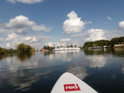 grote hegge maasplas  paddle board spot in Netherlands