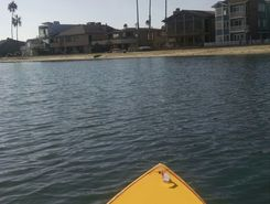naples canal paddle board spot in United States