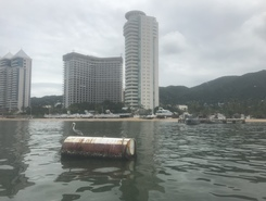 Acapulco  paddle board spot in Mexico