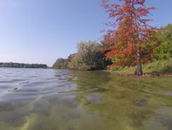 Bordeaux Lac spot de stand up paddle en France