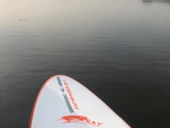 Krabbeplas (surfplas) paddle board spot in Netherlands