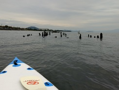 Hikone castle  paddle board spot in Japan