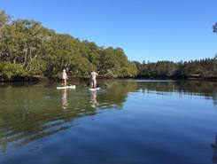 Boondal Wetlands sitio de stand up paddle / paddle surf en Australia