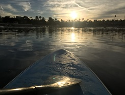 Newport back bay harbor spot de stand up paddle en États-Unis
