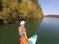Staubereich Staning sitio de stand up paddle / paddle surf en Austria