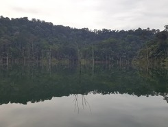Setia Alam Secret Unknown Lake spot de stand up paddle en Malaisie