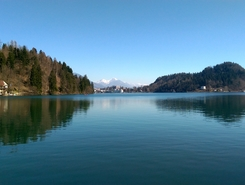 Lake Bled paddle board spot in Slovenia